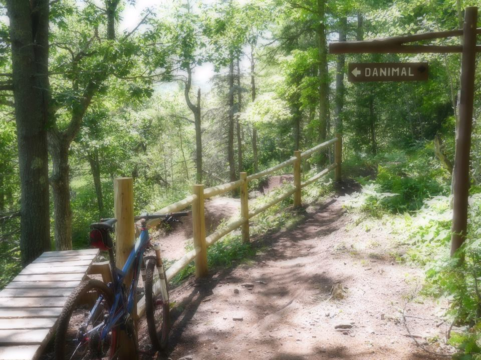 Going to be going to Copper Harbor in Aug.-danimal-trailhead.jpg