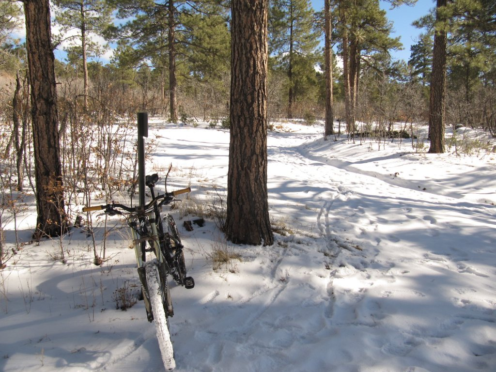 This year's first winter snow ride passion - No winter blues here!-david-canyon-002.jpg