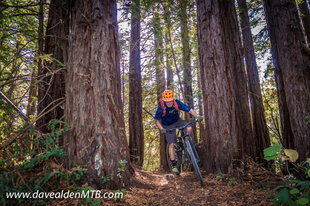 Some pics & video from Santa Cruz-day1-31.jpg