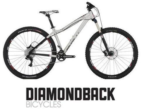 Name:  DB bike & logo 2014.jpg Views: 360 Size:  28.5 KB