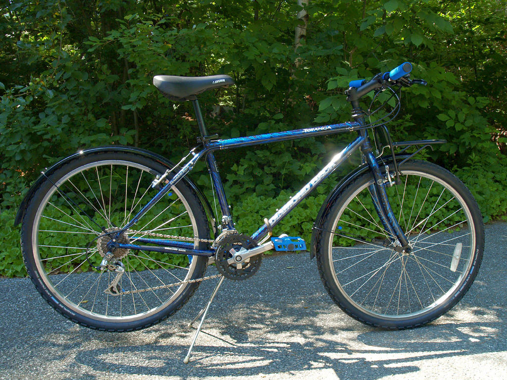 26ers over 10 years old-dbtopangablue01.jpg