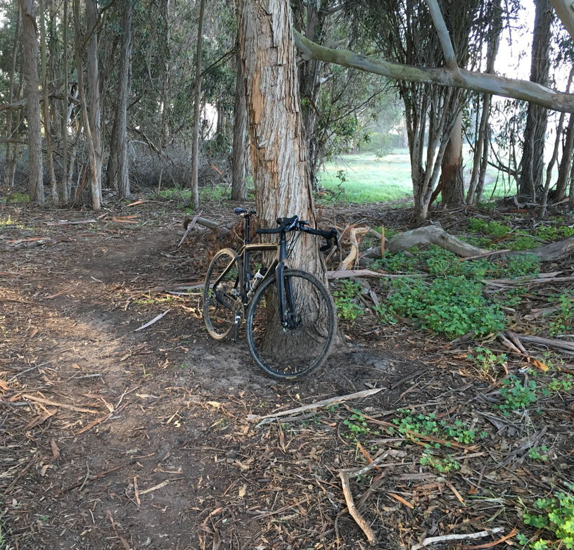 Cross Bikes on Singletrack - Post Your Photos-ddmoramesa.jpg