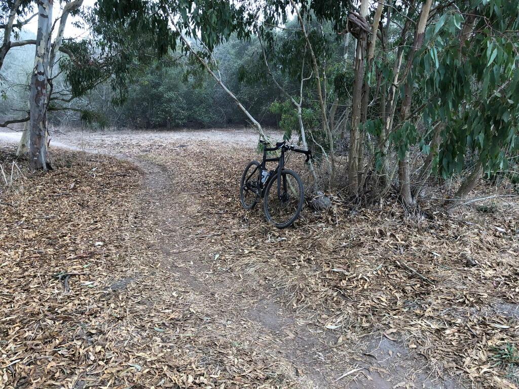 Cross Bikes on Singletrack - Post Your Photos-ddmoremesafront.jpg