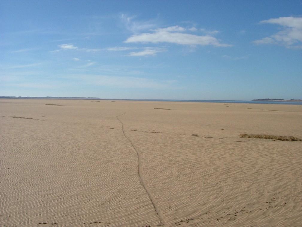Beach/Sand riding picture thread.-de13.jpg