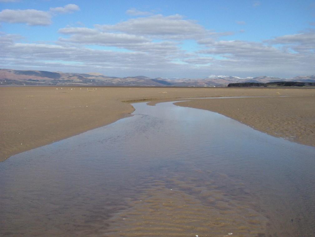 Beach/Sand riding picture thread.-de15.jpg