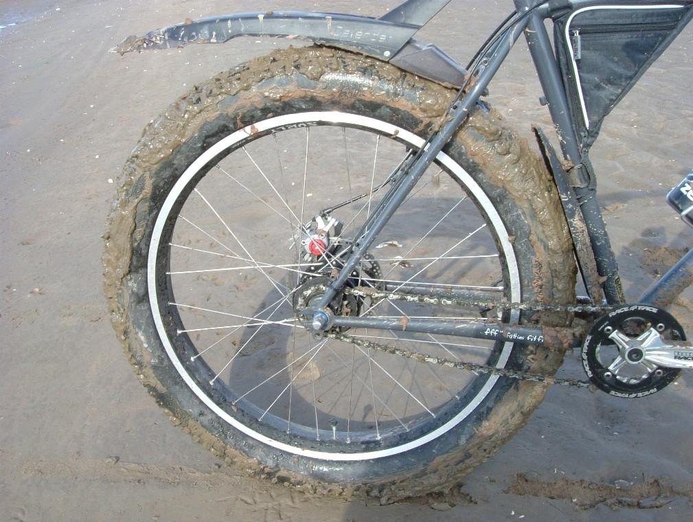 Beach/Sand riding picture thread.-de17.jpg