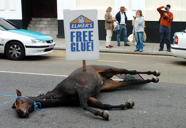 The Beat a Dead Horse Thread-dead-horse.jpg