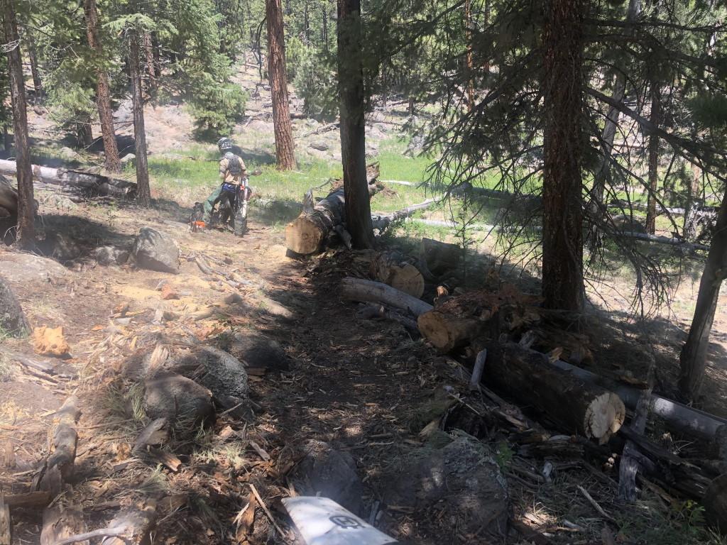 Flagstaff trail conditions.-deadfall_rocky-moto.jpg
