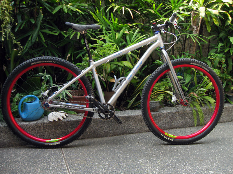 Post pics of your FULLY RIGID SS 29er-demo-dill.jpg
