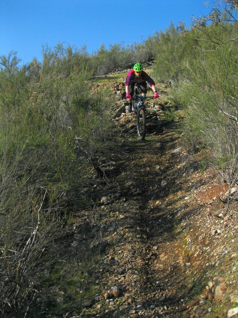 Hogan ride today (Sat)-dennis-coming-down-1750.jpg