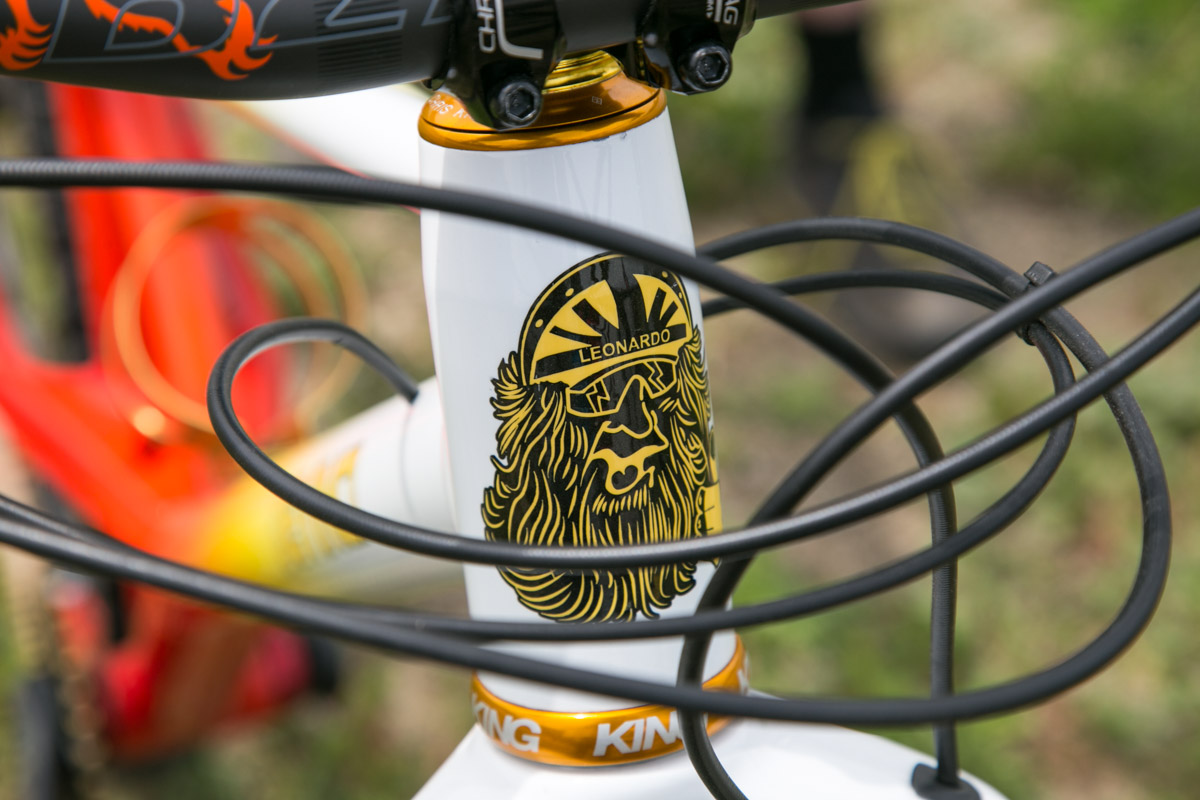 That headtube badge.
