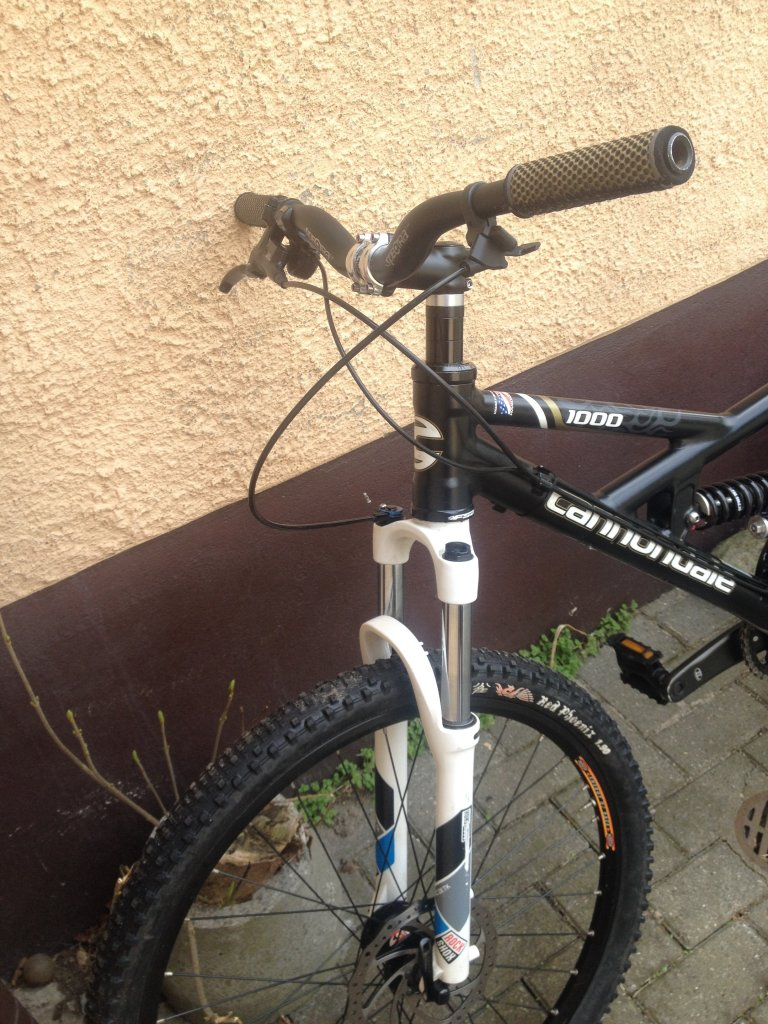 Downhill bike or not? Front brake necessary or not?-dh-front.jpg