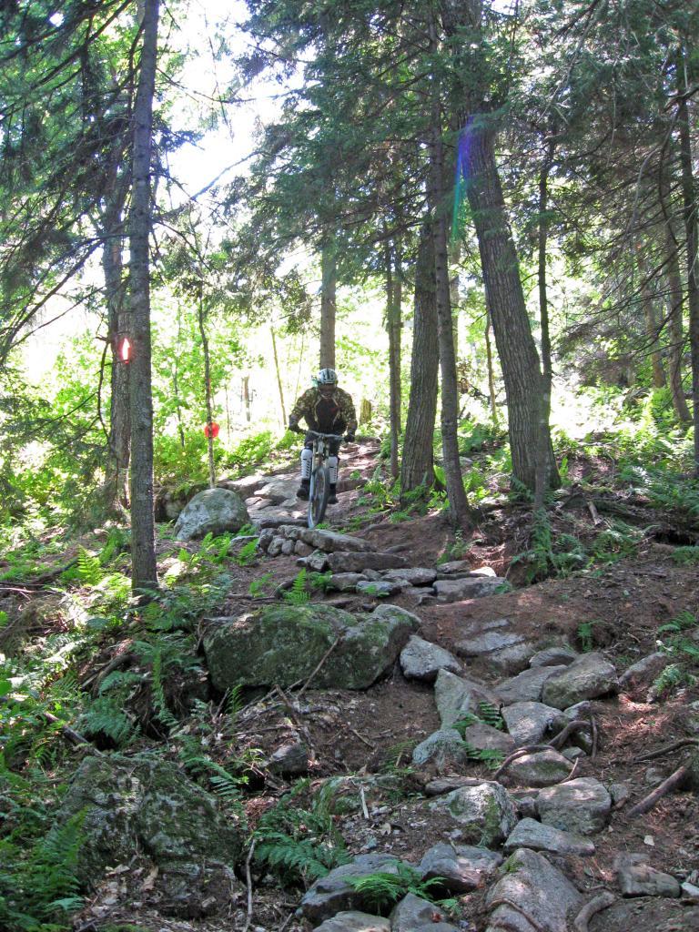 Sunday River Bike Park trail report for 8-5-dh-sept-9th004_edited.jpg