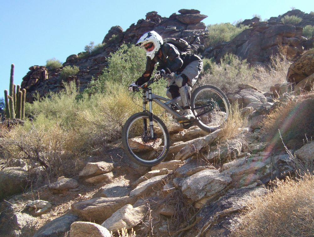 Photo Friday - 11-06-09-dhin-11-1-09.jpg