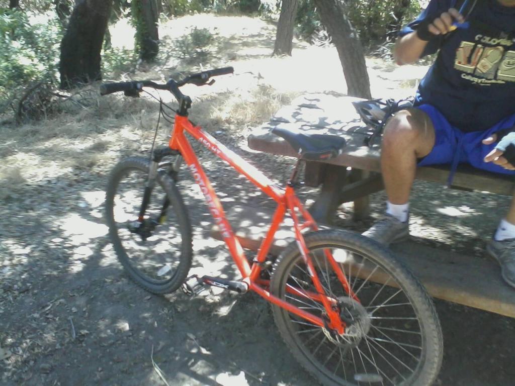 Newb first bike-dirtybike.jpg