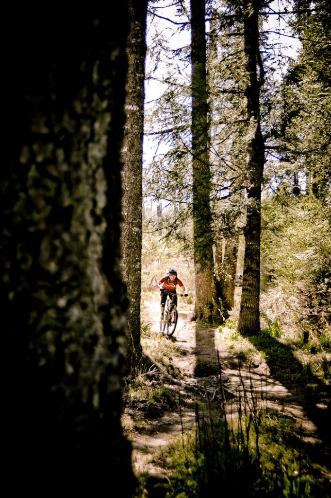 Bike Pics!-dl23122011-7-9-.jpg