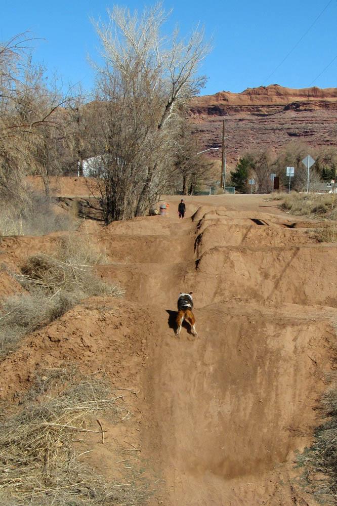 A Month in Moab [o]-doggydj.jpg