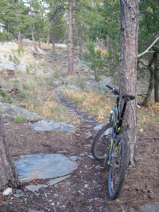 Most UNDER rated Mountain Bike destination /town?-dogs-bike-021.jpg
