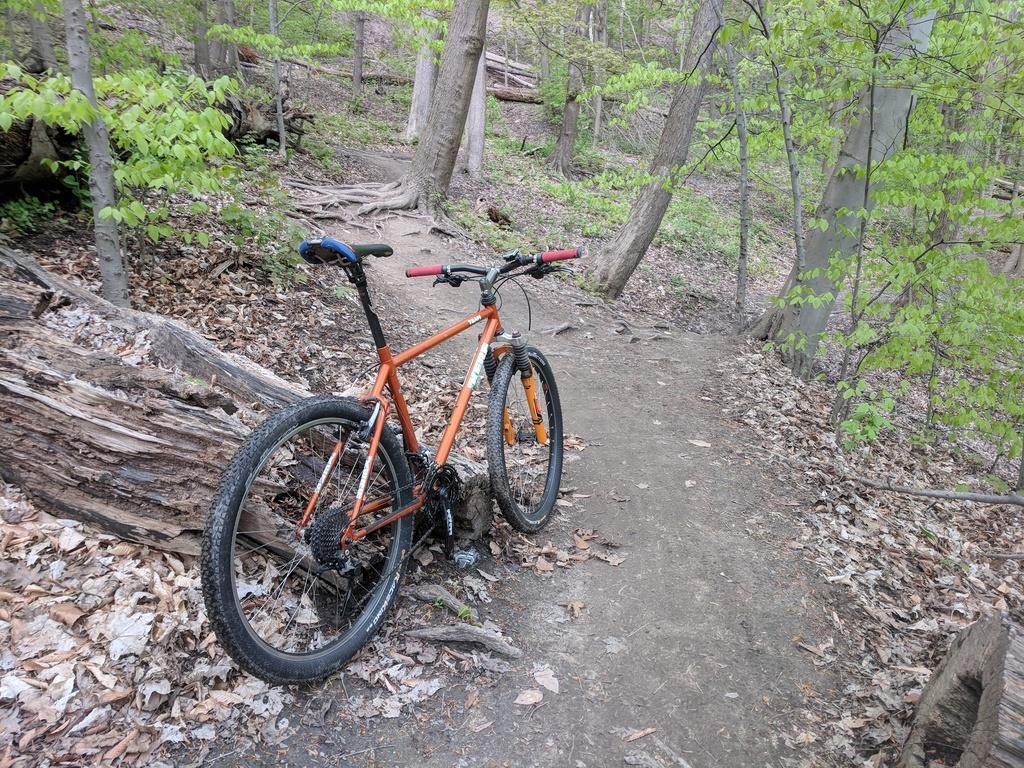 Local Trail Rides-donvalleydk.jpg