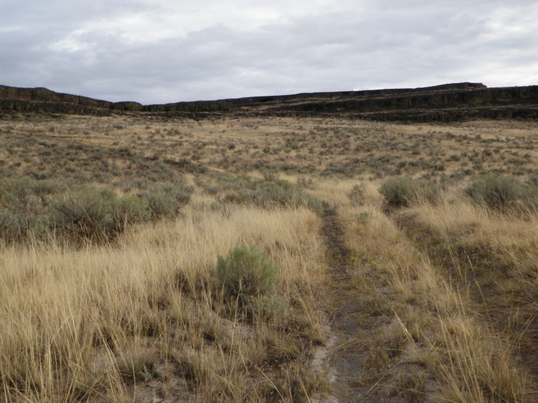 Moses Lake Area Trails-doubletrack-leading-east-up-hill_a.jpg