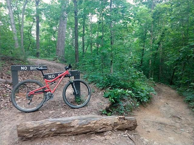 did you ride today?-down_trail.jpg