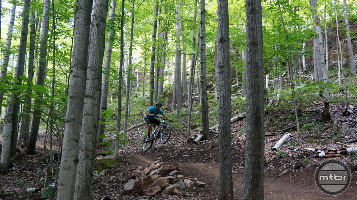 Down Dogger offers high-speed rollers and berms to create the ultimate roller coaster feel. This trail rips.