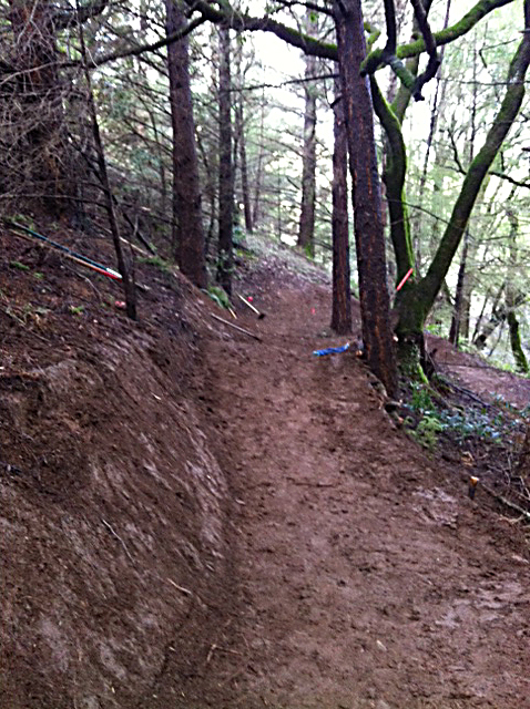 Tamarancho Flow Trail Party - if you live in the Bay Area you should show up-download-2.jpeg