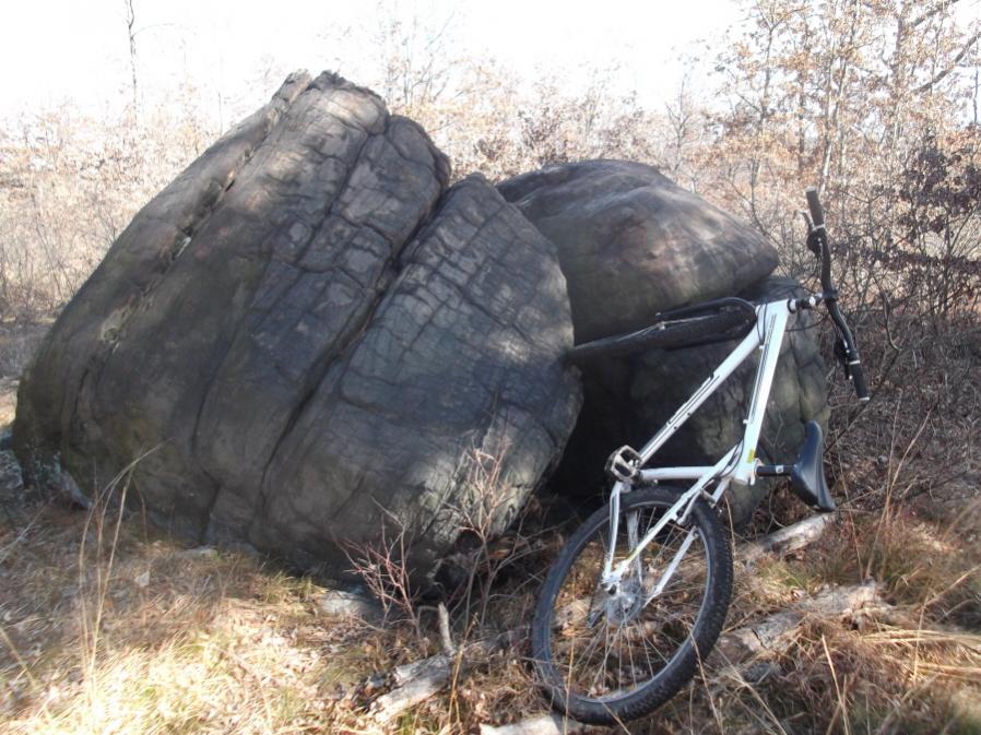 Mt Biking Ol'school trails...-dpm-2-23-12-032_900x900.jpg