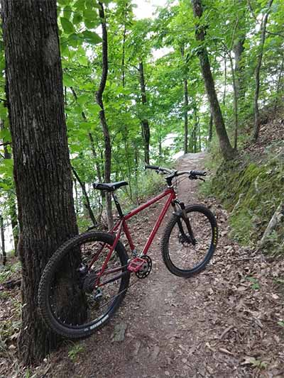 Post Pictures of your Steel Bikes!-dragon_on_south_loop.jpg