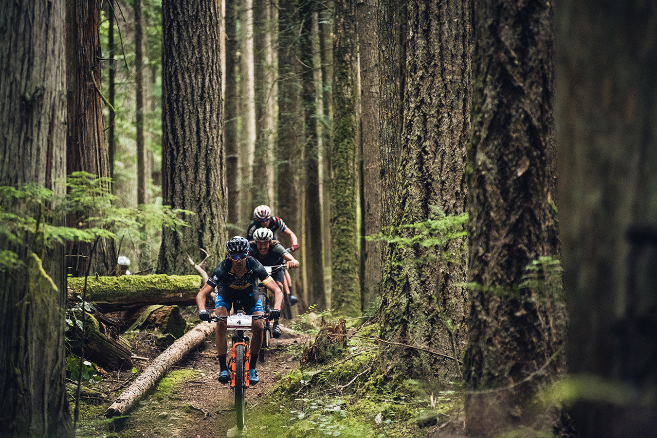 The Journey: A BC Bike Race Film