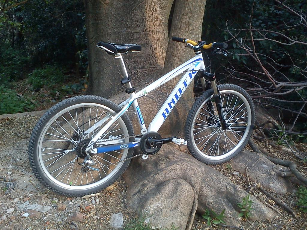 The All Mountain Hardtail Thread. Post up yours.-dsc00019.jpg