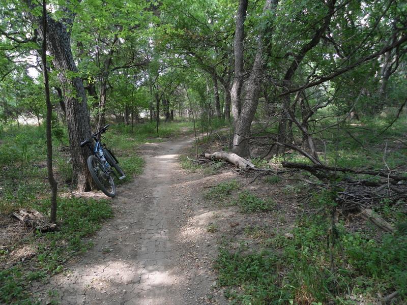 Leon Creek in Pics-dsc00043.jpg