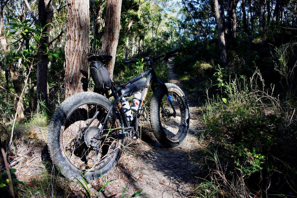 Fat Biking and health-dsc00074.jpg