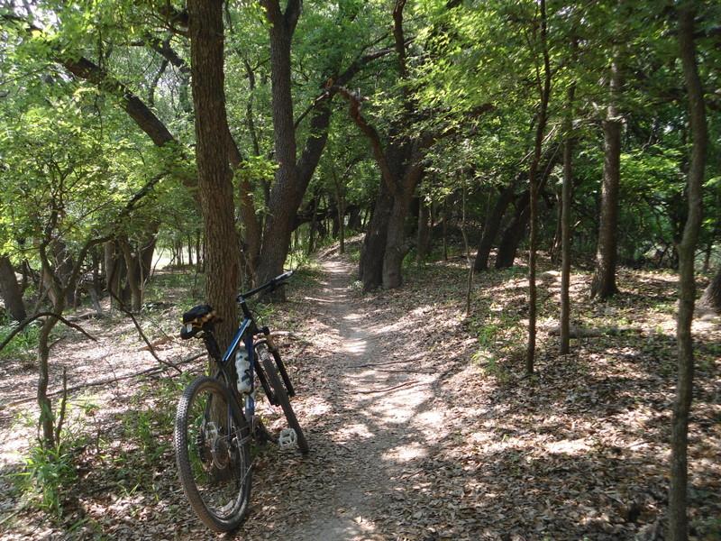 Leon Creek in Pics-dsc00076.jpg