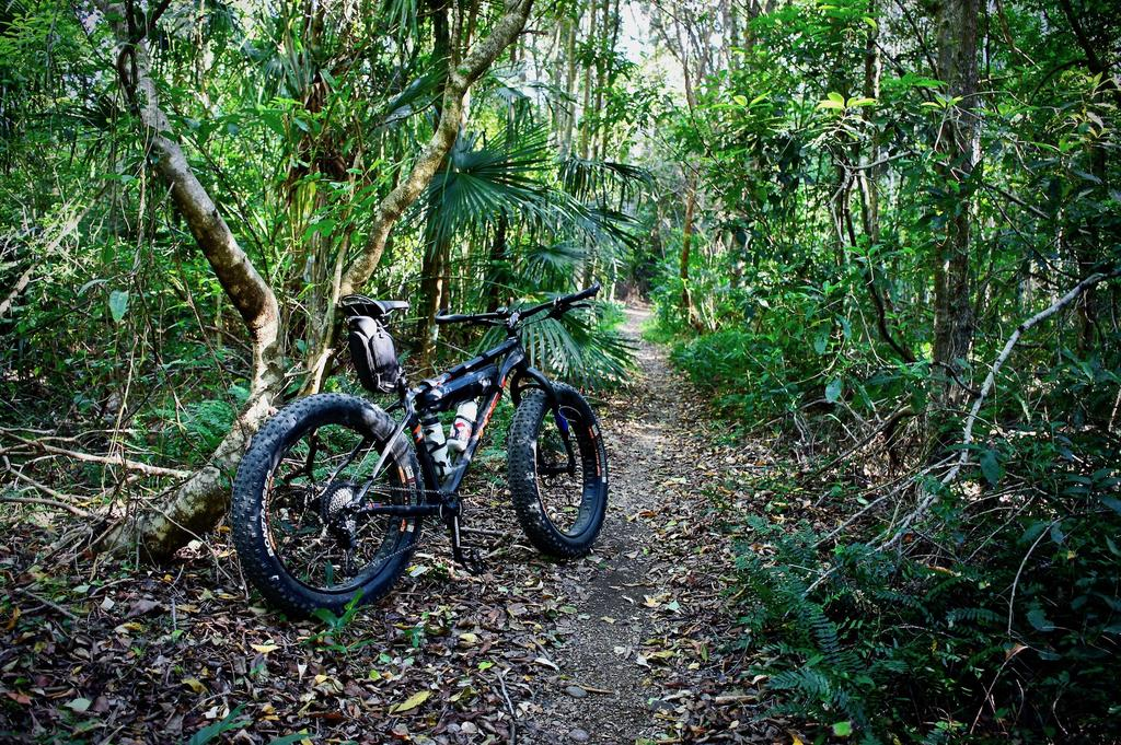 Fat Biking and health-dsc00078.jpg