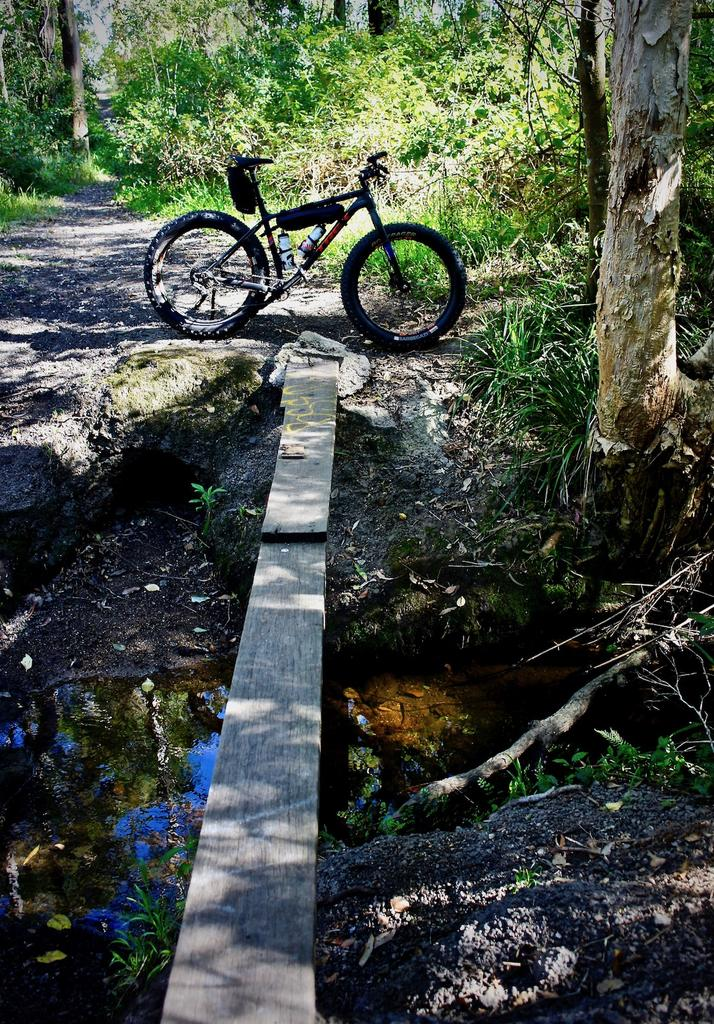 Fat Biking and health-dsc00090.jpg