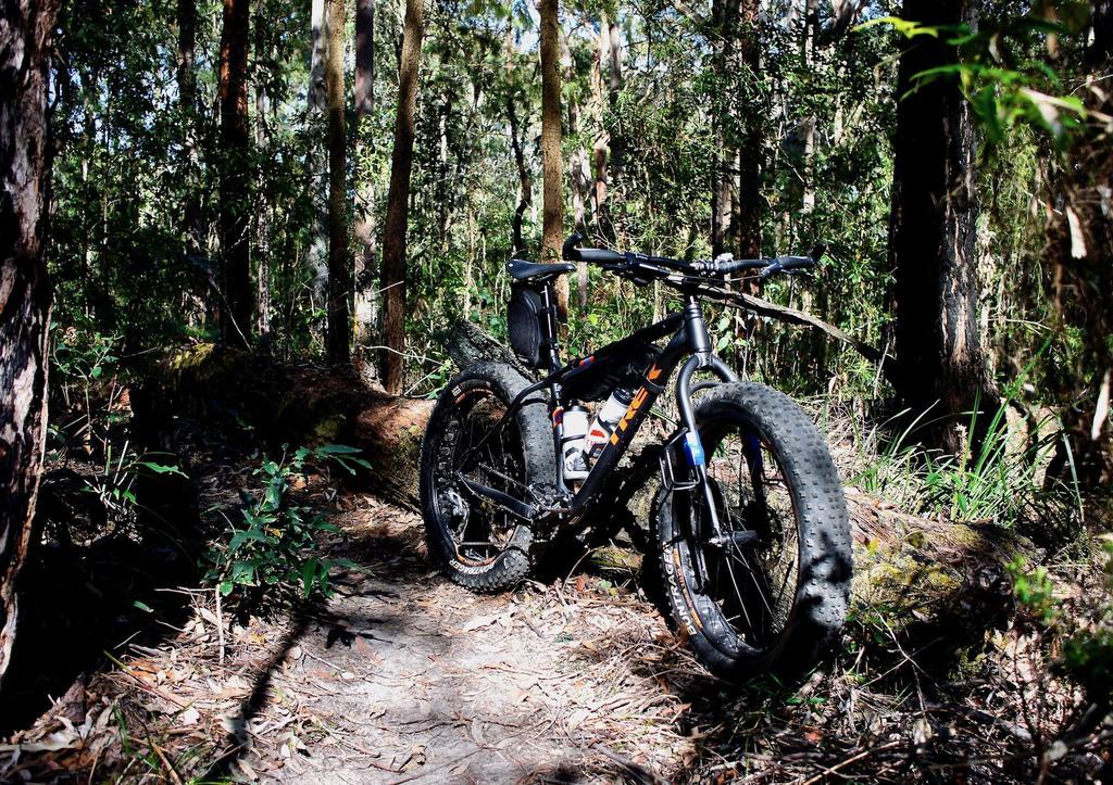 Fat Biking and health-dsc00095.jpg