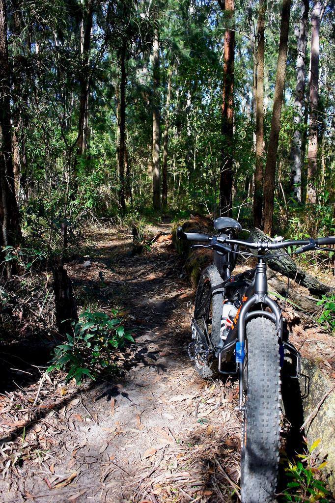 Fat Biking and health-dsc00099.jpg