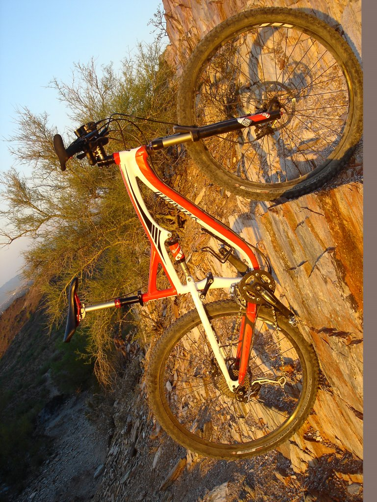 clydes that ride a 29er.... what are you riding?-dsc00108.jpg