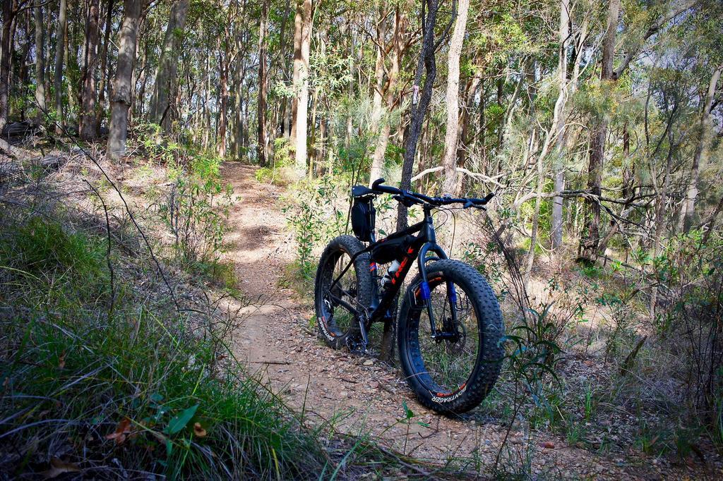 Fat Biking and health-dsc00121.jpg