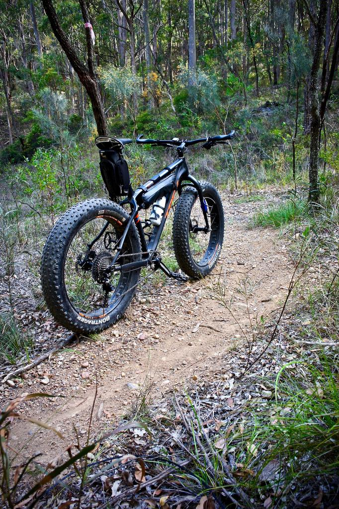 Fat Biking and health-dsc00123.jpg