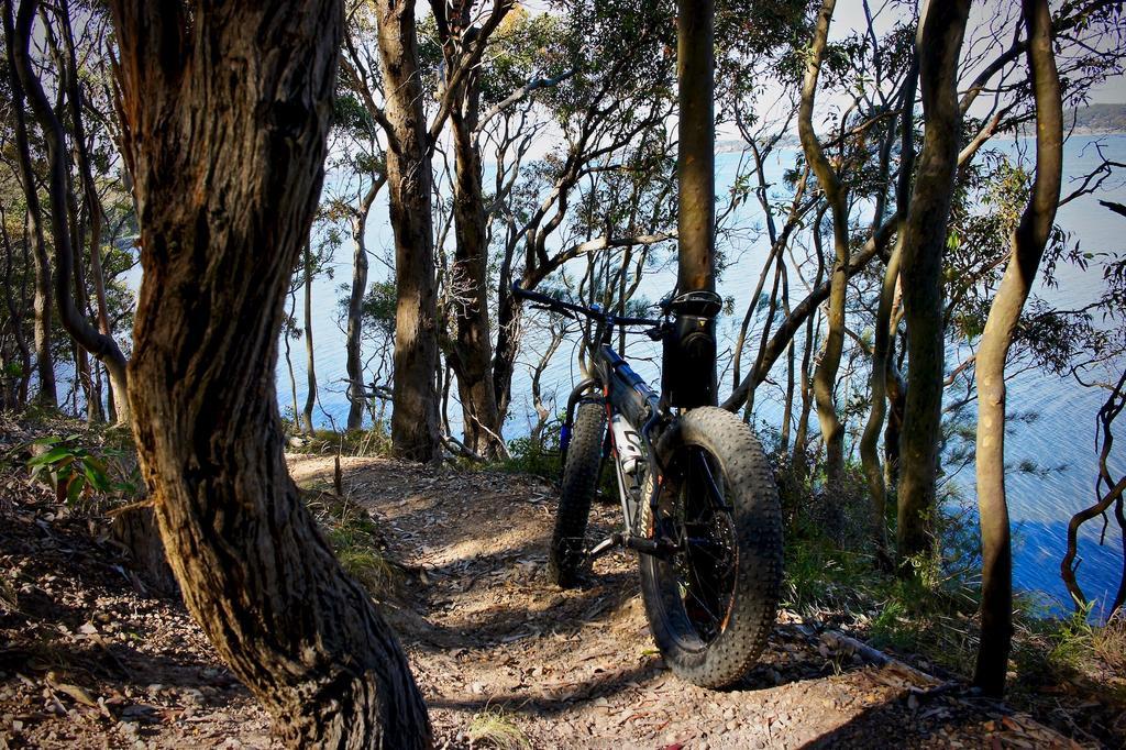 Fat Biking and health-dsc00128.jpg