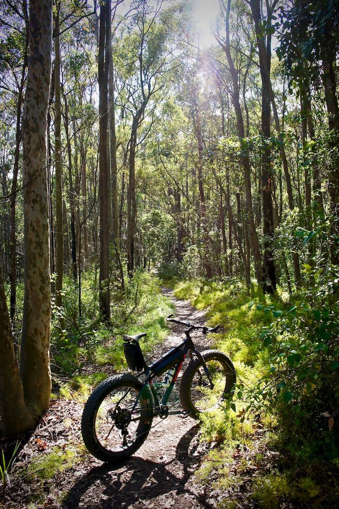 Fat Biking and health-dsc00129.jpg