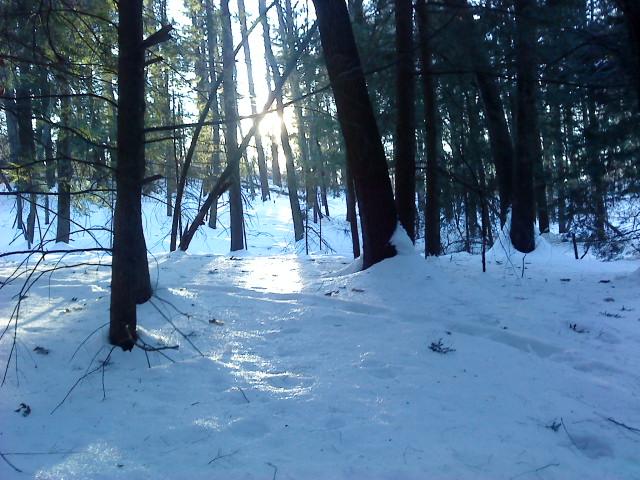 Winter riding conditions 2011-dsc00135.jpg