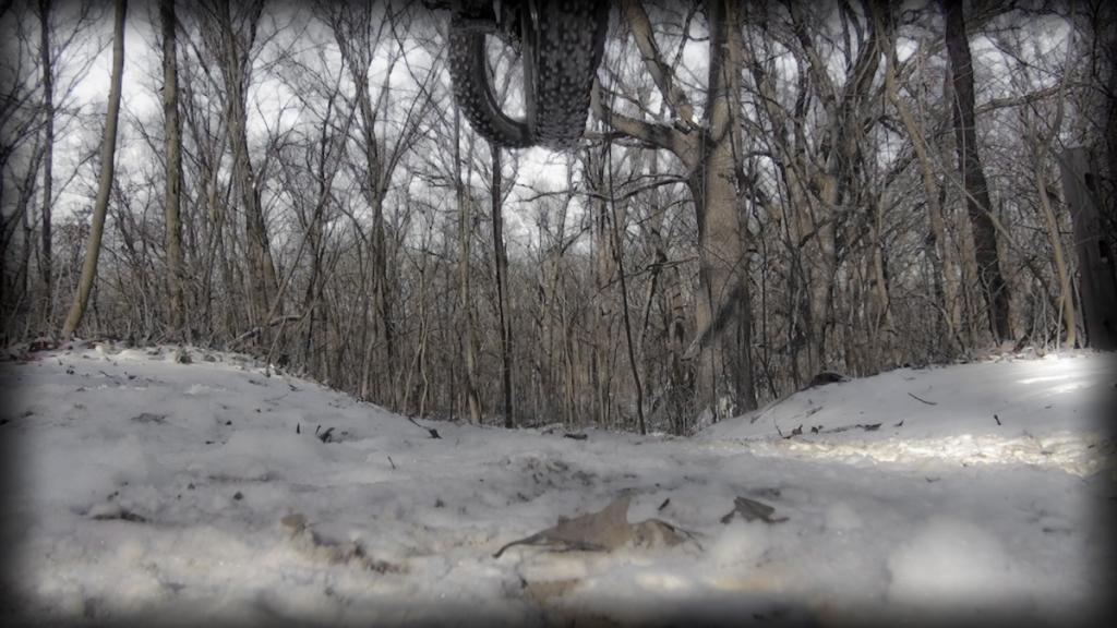 Fat Bike Air and Action Shots on Tech Terrain-dsc00146.jpg