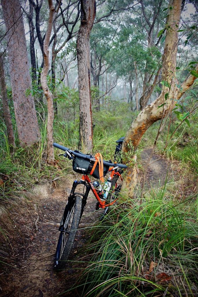 Fat Biking and health-dsc00243.jpg
