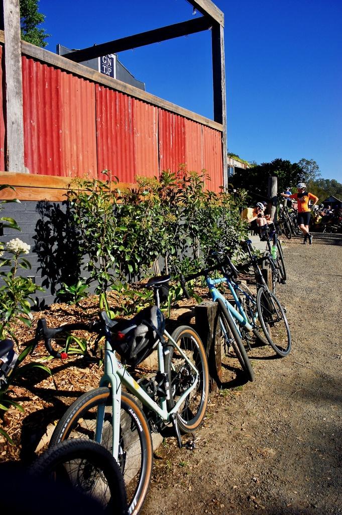 Fat Biking and health-dsc00344.jpg