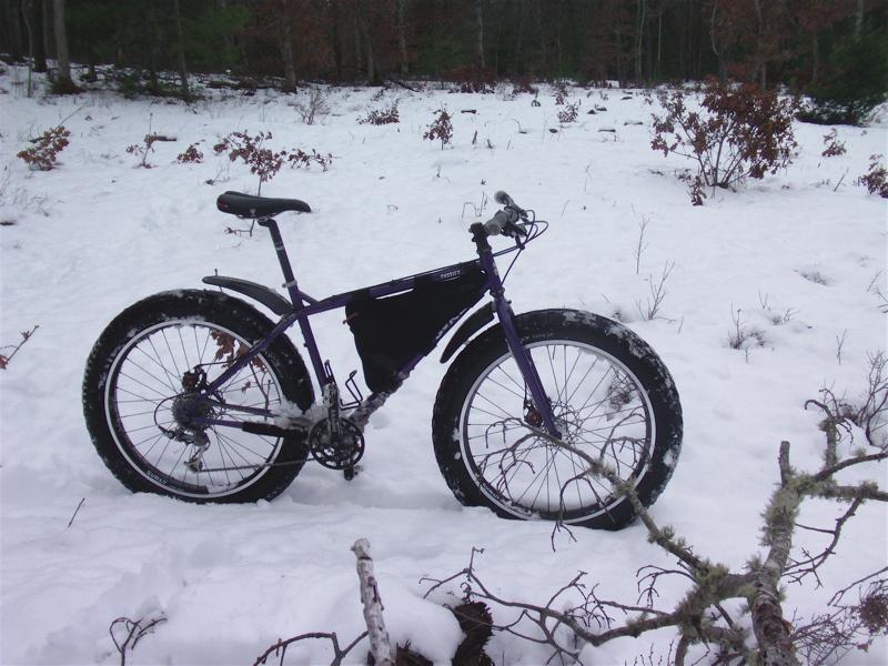 Daily fatbike pic thread-dsc00344.jpg