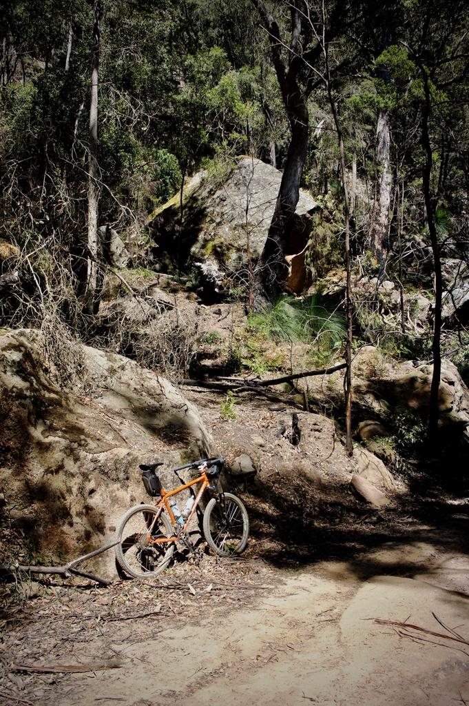Fat Biking and health-dsc00374.jpg