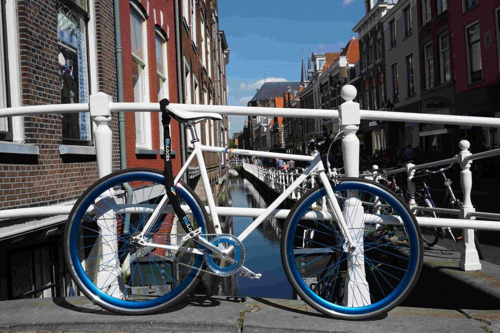 Design and win you dream bike-dsc00469new2.jpg